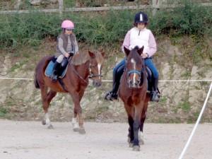 Cursos, clases y paseos a caballo en el ecoparque marín y ecoparque atalaia. Picadero propio a un paso de Pontevedra