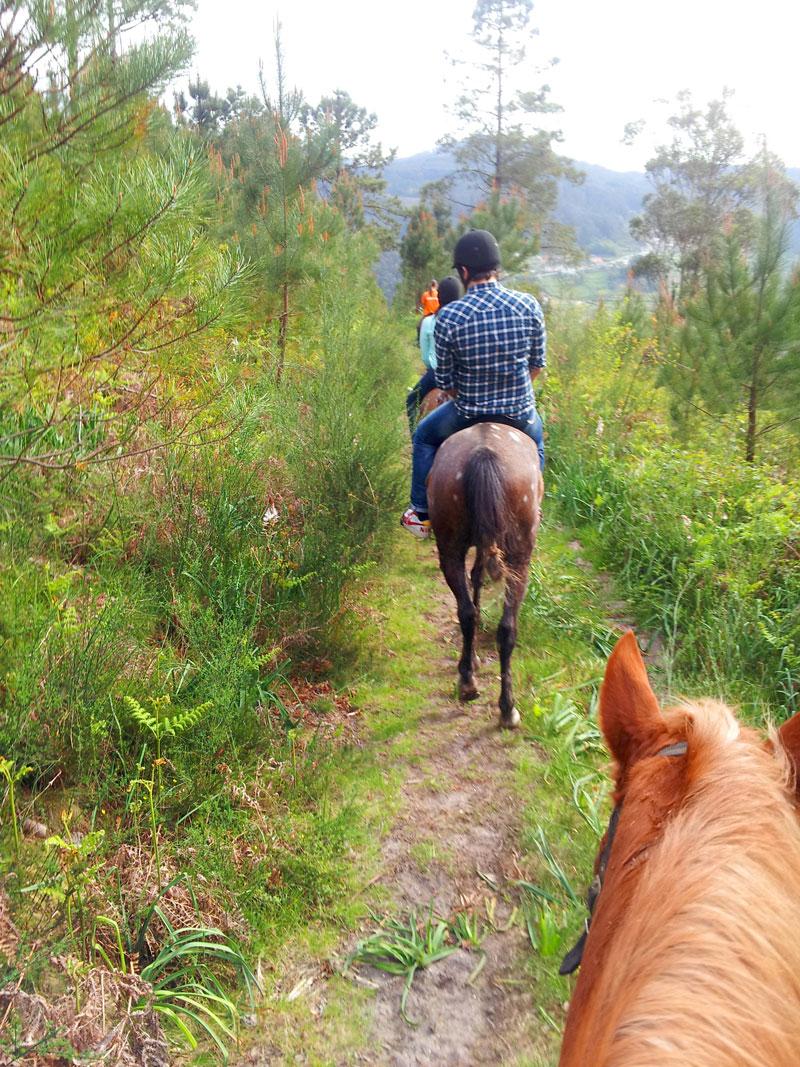 Rutas a caballo de 1,2,3 horas