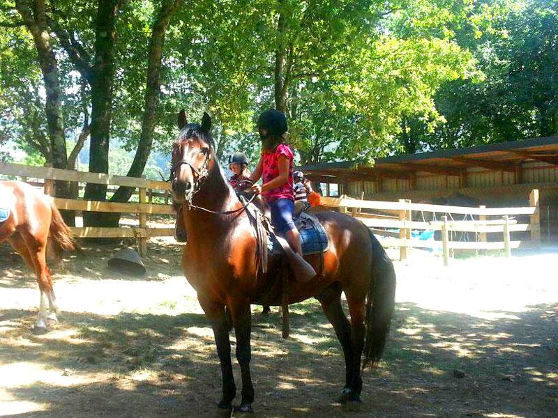 Paseos a caballo de longitud 1 o 2 km. Iniciación a la hípica.