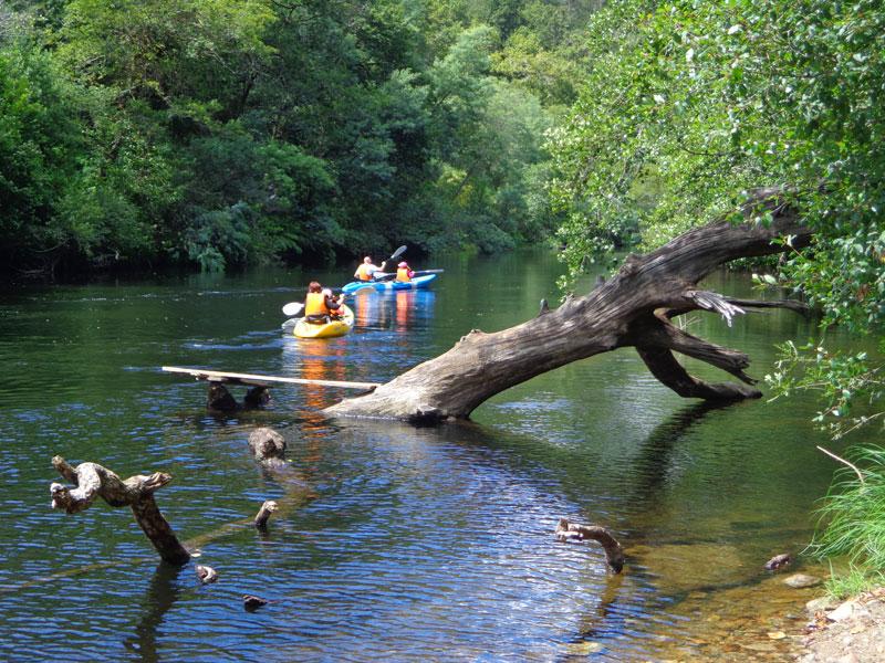 Kayak Libre en aguas del Rio Lerez - Ecoparque Atalaia