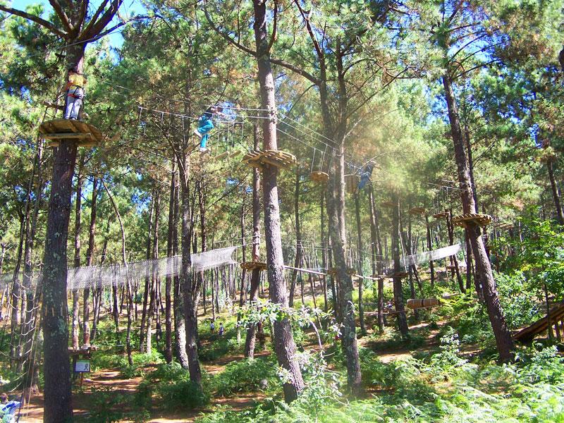 Circuitos Arbóreos. Actividades entre árboles en Ecoparque Marín