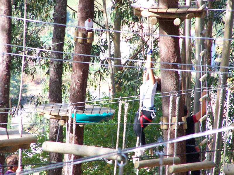 Disfruta de los circuitos arbóreos en Ecoparque Marín a 30 minutos de Vigo