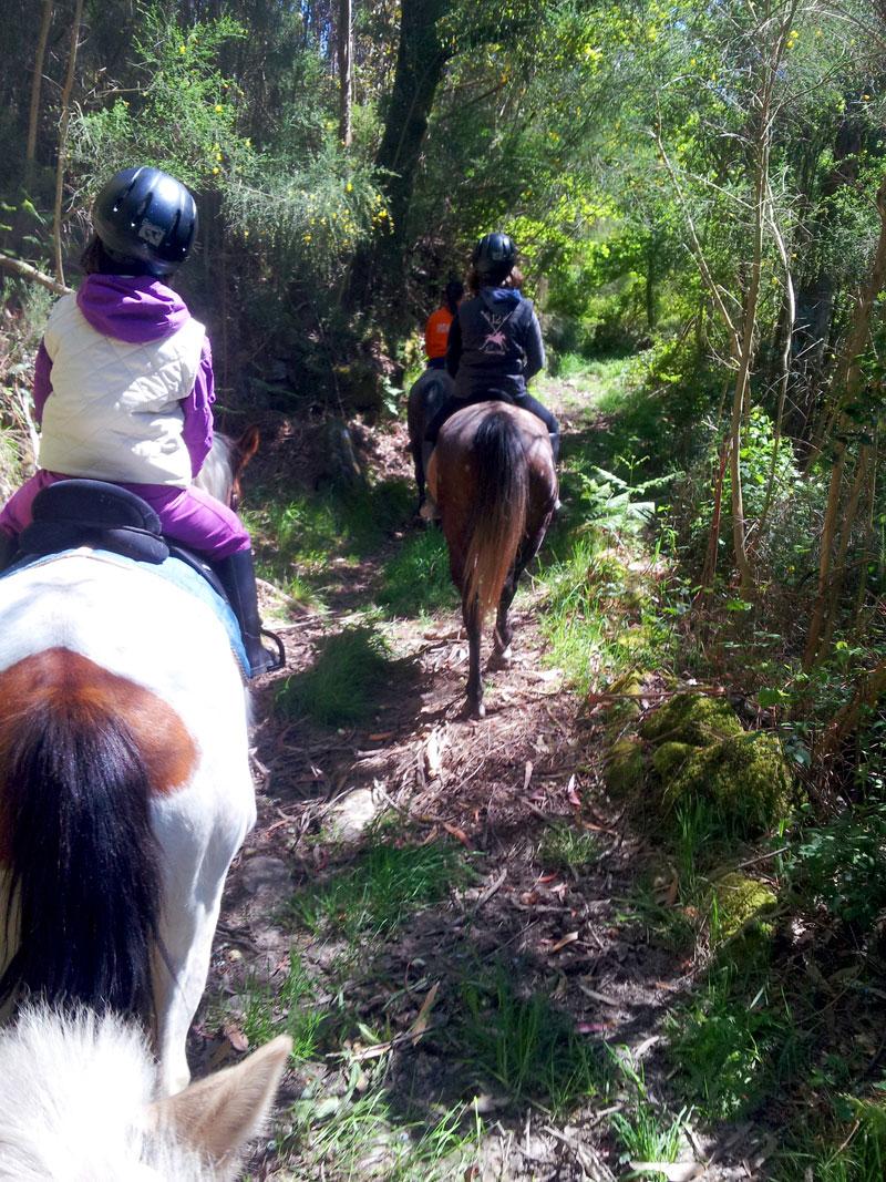 Paseos a caballo en Ecoparques Atalaia y Marín